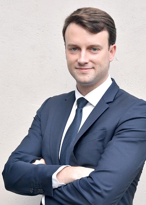 Nicolas LM, Inspecteur-auditeur